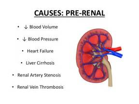 bladder pressure with renal disease picture 1