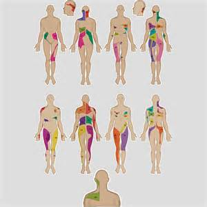 pain referral pattern for liver picture 2