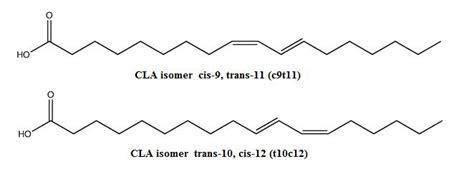 cis-9,trans-11 conjugated linoleic acid oprah picture 6