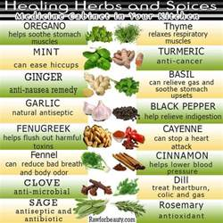 herbal foods and their uses philippines picture 2