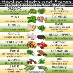 list herbal medicine philippines their uses picture 2