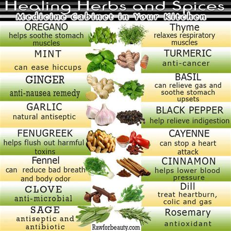 Herbal remedies for liver cancer picture 3