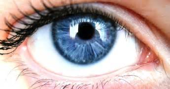 incoming search terms for the article keywordluv pupils eye picture 6