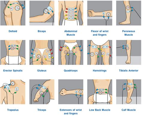 adhesive tens electrodes placement for male orgasm picture 1