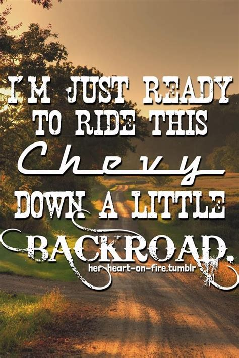 country music song skin picture 6