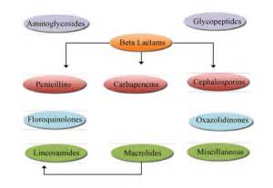 zithromycin and liver disease picture 1