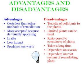 Advantages and disadvantages of herbal cure picture 3