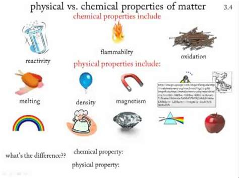 physical and chemical properties of yeast picture 2