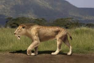 saber tooth tiger picture 11