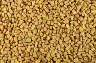 health benefits of fenugreek picture 3