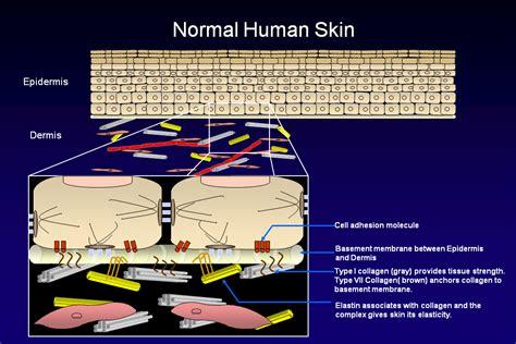 acne relief picture 14