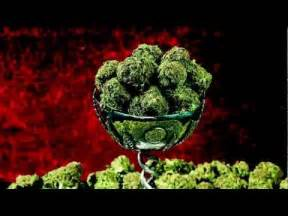 super strong weed strains thc 2014 picture 6