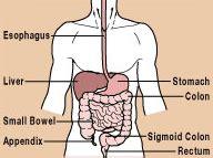 testosterone and ulceritis colitis picture 3
