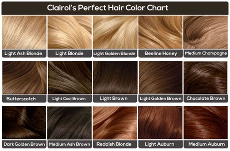 clairol hair chart picture 1