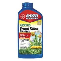 dandelion killer picture 2