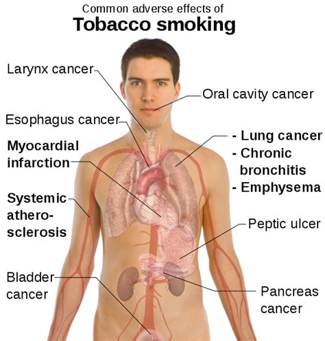 what affect does smoking have on healing after picture 1