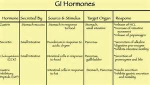 gastrointestinal hormones picture 1