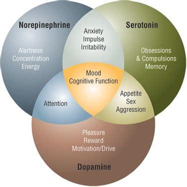 euphoria supplements pills picture 10