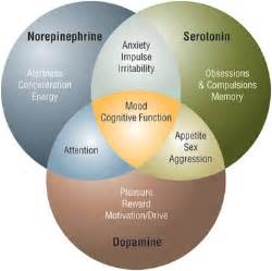 herbs and natural supplements to support brain receptors picture 9