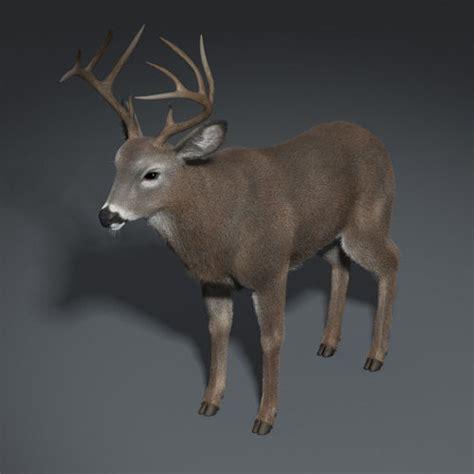 deer skin trader picture 3