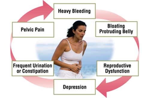 testosterone hormone during pregnancy picture 7
