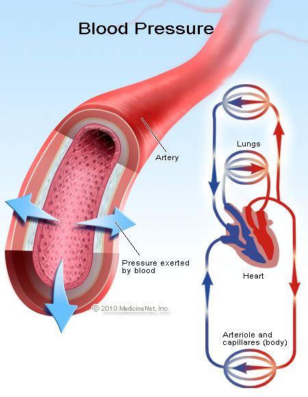 Cimetine high blood pressure picture 18