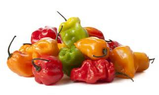 cayenne pepper and weight loss picture 6