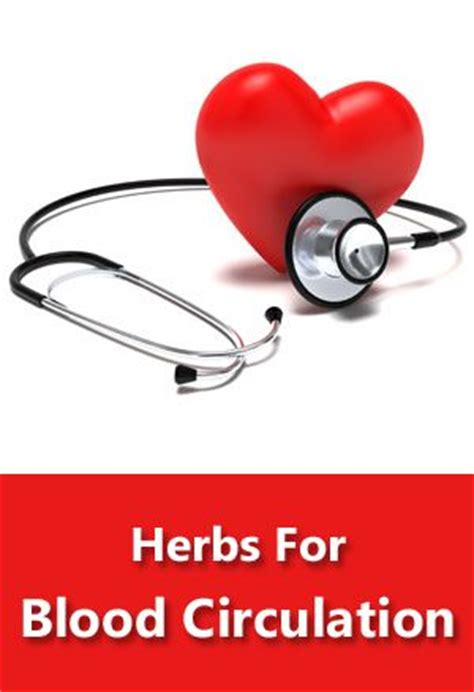 herb increase orus blood flow picture 17