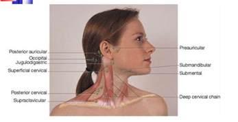 treatment thyroid lymphoma picture 9