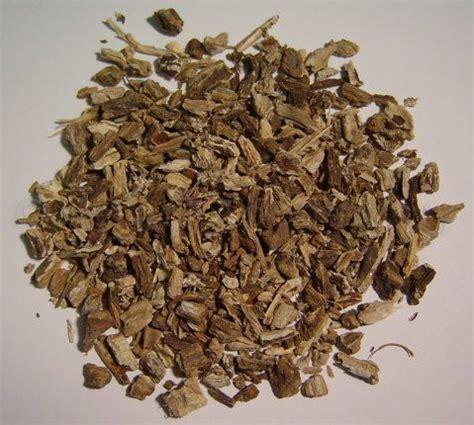 burdock root herbal �� ������� picture 17