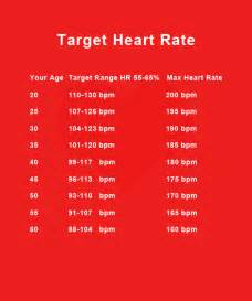 heart rate fat burning picture 18