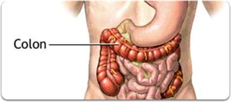 colon hydrotherphy picture 3