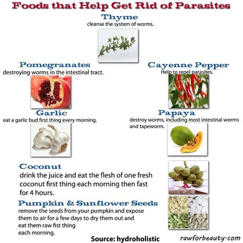 cleanse that will get rid of worms picture 6
