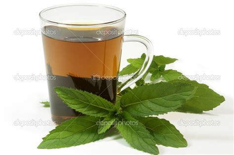peppermint tea picture 5
