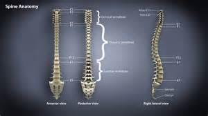 chronic pain treatment picture 5