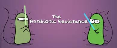 bacterial resistance picture 6