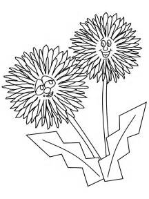 dandelion coloring picture 1