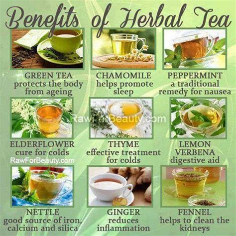 what herbal teas are safe to take while picture 9