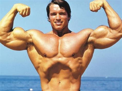 free muscle pictures picture 11