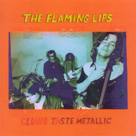 flaming lips bist picture 15