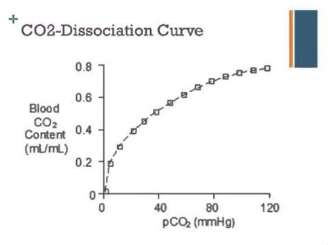where can i buy star curves medicine picture 10