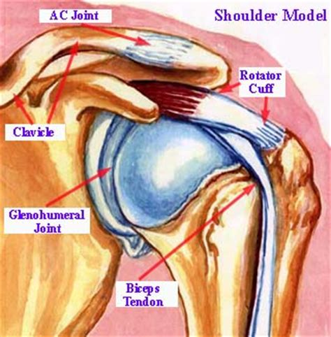 severe joint pain sudden onset picture 9
