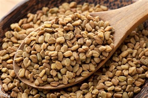 fenugreek picture 15