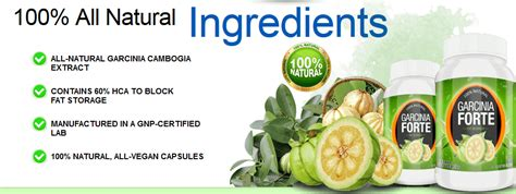 is garcinia forte a natural supplement picture 3