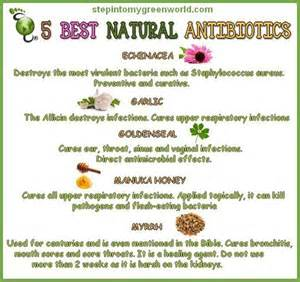 Herbal healing remedies picture 14