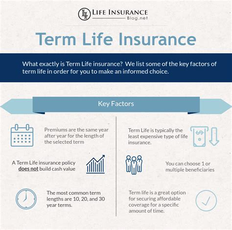 affordable term insurance picture 2
