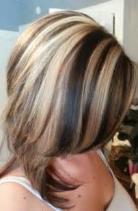 hair highlight example pictures picture 2