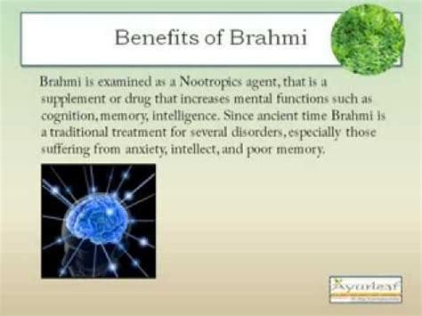 health benefits of koi herbal capsule picture 5