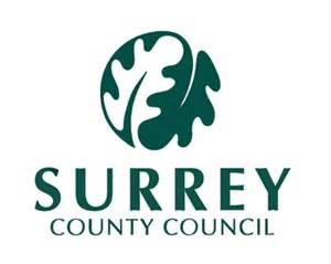 council picture 11