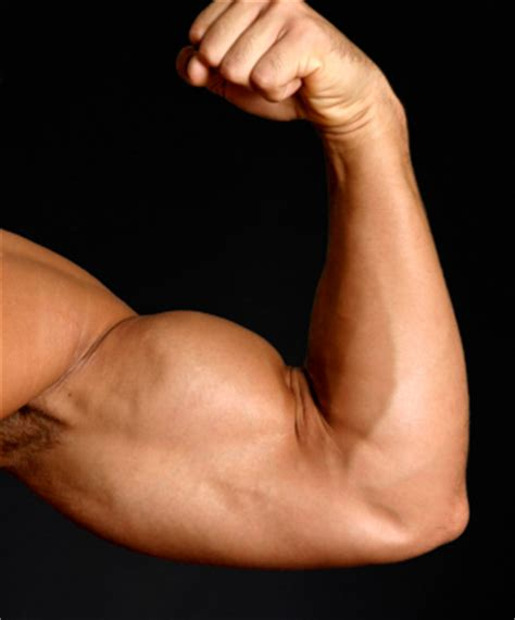 flexing muscles picture 11